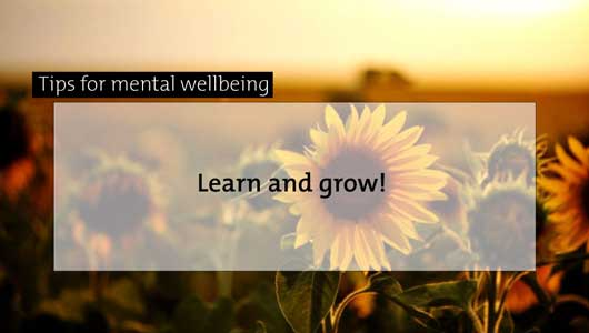 mental well being tips