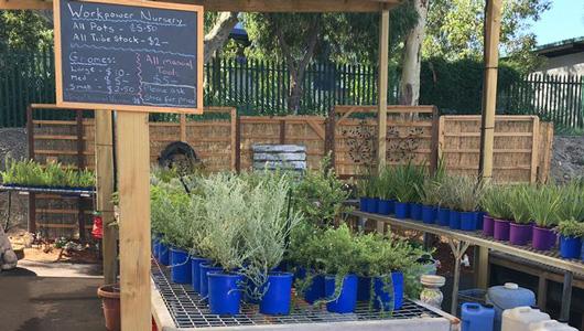 Check out our garden centre!