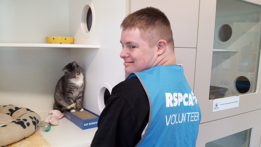 Jarrod's purrfect placement opens the door to opportunity!