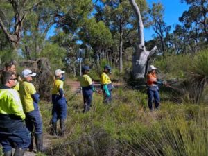 Project: Dieback treatment for the City of Cockburn