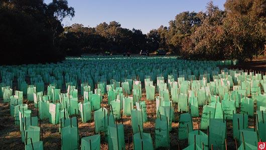 Protecting WA's biodiversity