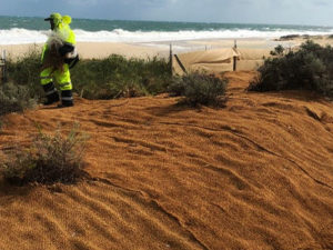 Project: Coastal dune stabilisation for local government