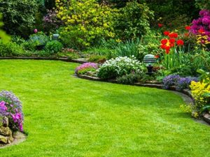 Introducing our new landscape package services