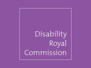 Focus areas of the Royal Commission