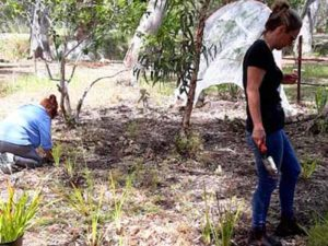 Nursery gives back to local community