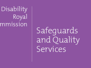 Issue Paper summary: Safeguards and Quality Services pt 2